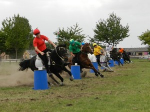 mounted-games-3